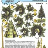 B1 003 - SMRK II